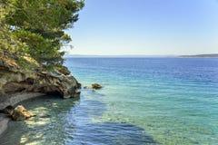 Schöne Kiefer und das Ufer des blauen Meeres kroatien Lizenzfreies Stockbild
