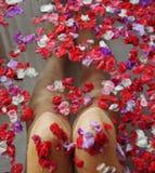 Schöne Knie der Frau im Wasser mit Blumen Stockbilder