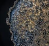 Schöne Kristalle von Vitamin c lizenzfreie stockbilder