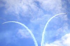 Schöne Kunstfliegen Stockfoto