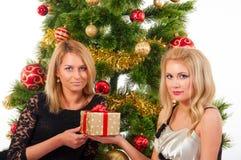 Schöne lächelnde Frauen und der Weihnachtsbaum Stockfoto