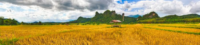 Schöne ländliche Landschaft Vang Vieng, Laos Panorama lizenzfreie stockbilder