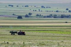Schöne ländliche Szene im Frühjahr mit einem Fahrzeug, das Futter erfasst stockbilder