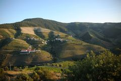Schöne Land-Landschaft von Alto Douro, Portugal stockbilder