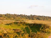 Schöne Landbauernhofgras-Landszene außerhalb Person gehendes h lizenzfreies stockbild