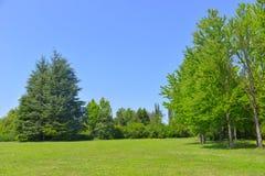 Schöne Landschaft Lizenzfreie Stockbilder