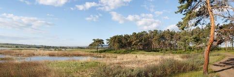 Schöne Landschaft lizenzfreie stockfotos