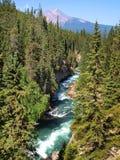 Schöne Landschaft in Alberta, Kanada Stockfotos