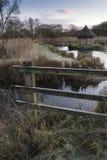 Schöne Landschaft auf eisigem Wintermorgen von Aalreusen über f Lizenzfreie Stockfotografie