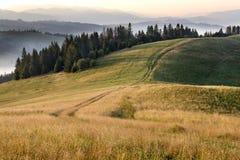 Schöne Landschaft der Karpatenberge am frühen Morgen am Sonnenaufgang und an der Straße, die durch den Gebirgshügel überschreitet Lizenzfreies Stockfoto