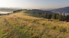 Schöne Landschaft der Karpatenberge am frühen Morgen am Sonnenaufgang und an der Straße, die durch den Gebirgshügel überschreitet Stockbild