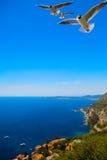 Schöne Landschaft der Kunst von Sommermeer. Cote d'Azur lizenzfreie stockbilder