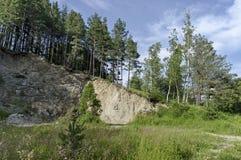Schöne Landschaft der Sommernatur mit Wald in der Steigung, in der grünen Lichtung und in wohlriechendem Blüte Wildflower, Plana- Lizenzfreies Stockbild