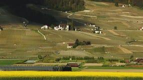 Schöne Landschaft der Wiesen und der Häuser Lizenzfreie Stockfotografie