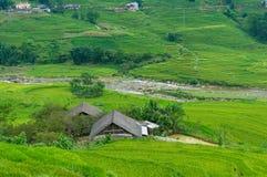 Schöne Landschaft des Bauernhauses unter Reisterrassen Lizenzfreies Stockbild