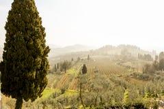 Schöne Landschaft des Frühlinges, früher Morgen in Toskana, Italien stockbild