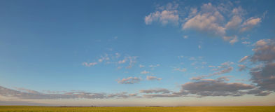 Schöne Landschaft des Weizenfeldes, Straße auf dem Hintergrund des erstaunlichen blauen Himmels mit erstaunlichen Kumuluswolken Stockfotos