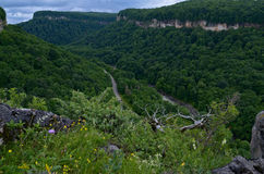 Schöne Landschaft in einem Gebirgstal Grünes Laub O des Sommers Stockfoto
