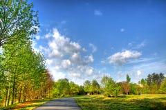 Schöne Landschaft in einem Park Lizenzfreie Stockbilder