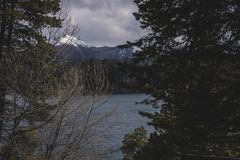 Schöne Landschaft einer Waldfläche im Winter Stockbild