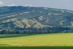 Schöne Landschaft eines Feldes mit Heuballen gegen den großen Hügel Lizenzfreies Stockfoto