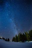 Schöne Landschaft eines sternenklaren Himmels des Nachtwinters über Kiefernwald, des langen Belichtungsfotos der Mitternachtstern Stockfotografie