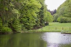 Schöne Landschaft im Park Stockbild