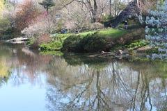 Schöne Landschaft im Park während des Frühlinges Lizenzfreies Stockbild