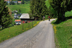 Schöne Landschaft im Schwarzwald in Deutschland Stockfotografie
