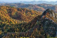 Schöne Landschaft in Karpaten stockfoto