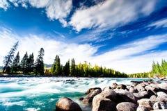 Schöne Landschaft mit dem Fluss Stockfoto