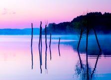 Schöne Landschaft mit einem See und Bergen im Hintergrund und Bäumen im Wasser Blauer und purpurroter Farbton Lizenzfreies Stockbild