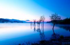 Schöne Landschaft mit einem See und Bergen im Hintergrund und Bäumen im Wasser Blauer und purpurroter Farbton Lizenzfreie Stockfotos