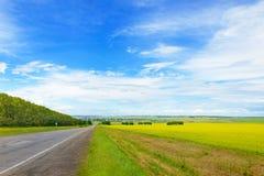 Schöne Landschaft mit grünem Gras, blauem Himmel und Straße Stockfotos