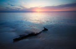 Schöne Landschaft mit Seeküste, Sonnenunterganghimmel, Baumstumpf Stockfotografie