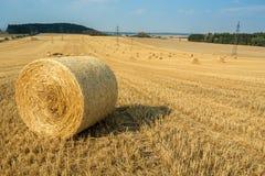 Schöne Landschaft mit Strohballen auf den geernteten Gebieten Lizenzfreies Stockbild