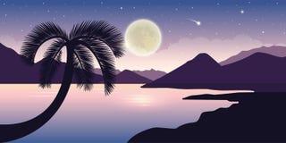 Schöne Landschaft nachts mit Vollmond der Palme und sternenklarem Himmel lizenzfreie abbildung