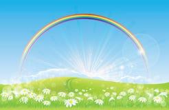 Schöne Landschaft - Regenbogen - Gänseblümchen Stockfotos