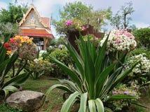 Schöne Landschaft in Thailand Lizenzfreie Stockbilder