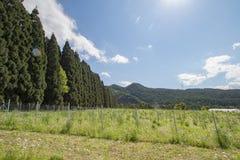 Schöne Landschaft von Takayama Mur Stockfotografie