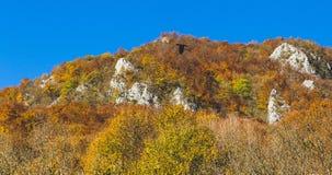 Schöne Landschaft während der Herbstzeit voll von Farben und von reizendem blauem Himmel Stockfotografie