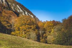 Schöne Landschaft während der Herbstzeit voll von Farben und von reizendem blauem Himmel Stockfotos
