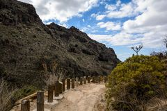 Schöne Landschaften von Barranco Del Infierno in Teneriffa stockbild