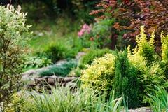 Schöne Landschaftsgestaltung im Hausgarten Stockfotografie