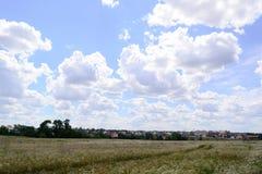 Schöne Landschaftssommerlandschaft mit Häusern Stockbild