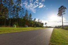 Schöne LandstraßenAsphaltstraße durch den Wald unter einem blauen Himmel Stockfotos