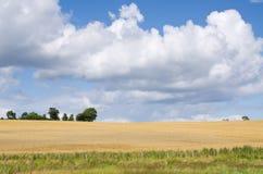 Schöne landwirtschaftliche Landschaft Stockfoto