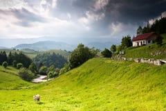 Schöne landwirtschaftliche Landschaft von Rumänien Lizenzfreie Stockfotos