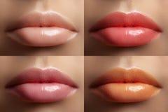 Schöne Lippensammlung Sexy Make-up der Mode stellte mit den weiblichen prallen Lippen ein Modevariante für Make-up Blasser Satz N Stockbilder