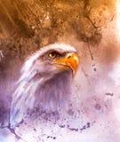 schöne Malerei von zwei Adlern auf ein Zusammenfassungshintergrund Symbolen der USA Stockbild